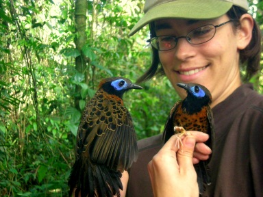 Lauren with Ocellated Antbirds