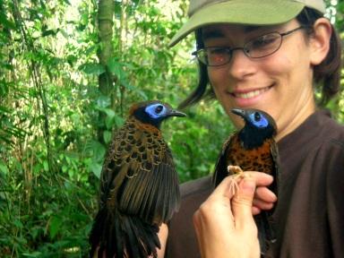 Lauren with Ocellated Antbirds