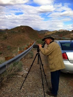 Birding the Bill Williams