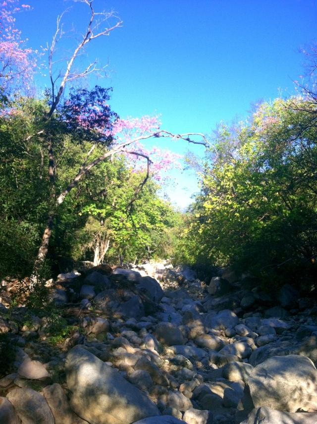 Cañón Cieneguilla