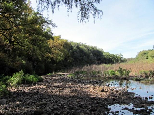 Rio Cuchujaqui